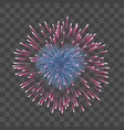 beautiful heart-firework bright romantic firework vector image