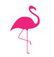colorful cartoon pink flamingo on one leg stands vector image vector image
