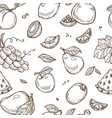 fruits sketch pattern background seamless vector image vector image