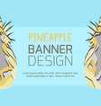 horizontal banner with paper pineapple cut out vector image vector image