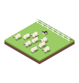 Isometric 3d of farm animals vector image vector image