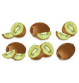 kiwi set realistic isolated on white vector image vector image