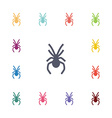 spider flat icons set vector image vector image