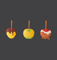 sweet caramel and chocolate candy apple set vector image vector image
