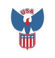 USA eagle Shield Birds of prey in colors of vector image
