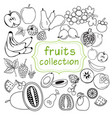 collection doodle organic fruits line art vector image vector image