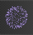 firework lilac bursting isolated transparent vector image vector image