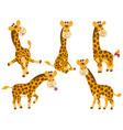 Giraffes Set vector image vector image