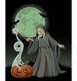 Halloween witch casts a spell vector image vector image