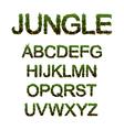 jungle font vector image