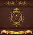 Letter E Luxury Logo template flourishes vector image vector image