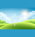 spring time green grass landscape background with vector image vector image