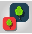 beautiful icon flat blossoming tree eps vector image vector image
