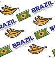 brazil travel destination national flag and banana vector image