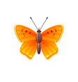 butterfly icon 3d realistic butterfly insect with vector image