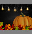 chalkboard with autumn leaves and pumpkin vector image vector image