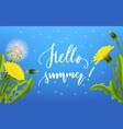 dandelion seed background lettering vector image