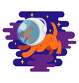 dog in space vector image vector image