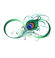 Infinity Symbol with Peacock Feather vector image vector image