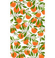 orange grapefruit panicle white vector image vector image
