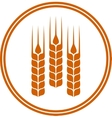 round icon with wheat ears vector image vector image