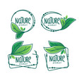 nature product doodle organic green leaves vector image vector image