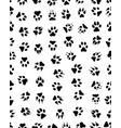 prints of dog paw vector image vector image
