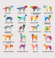 set of colorful mosaic dogs silhouettes vector image vector image