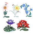 set of decorative interior items isolated vector image vector image