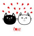black white contour cat head couple family icon vector image vector image