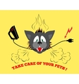 Cats head bite electrical wire cable Care of vector image vector image
