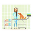 cheerful veterinary doctor examining dog in vet vector image vector image