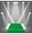 green carpet vector image vector image