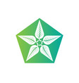 logo leaves in form a star abstract vector image