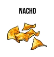 Nachos traditional Mexican food made vector image