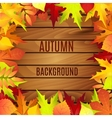 Beautiful background with autumn leaves on wooden vector image
