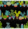 Horizontal patterns of cactus in flat style vector image