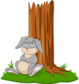 cartoon rabbit sleeping under tree vector image vector image