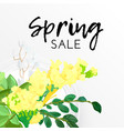 floral spring design with white and yellow flowers vector image vector image
