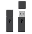 Usb flash drives vector image vector image