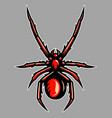 venomous spider tarantula mascot vector image vector image