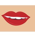 women lips vector image