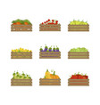 wooden crates with farm vegetables set organic vector image vector image