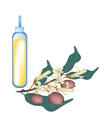 Yellow Dipterocarpaceae Flower with Essential Oil vector image vector image