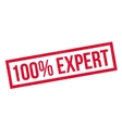 100 percent Expert rubber stamp vector image vector image