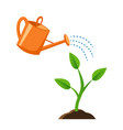 a small plant growing in ground flat style vector image