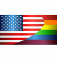 grunge usa and gay flags vector image vector image