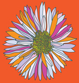 Orange camomile print vector image vector image