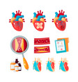 set of cardiology icons in flat style vector image