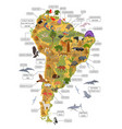 south america flora and fauna map flat elements